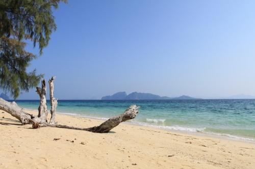 クラダン島、正直あまり聞いたことの無いところ島だと思いますが、ホテル(バンガロー)も含めて4件ほどしか無い島です。バンコクから空路クラビ又はトラン空港へ飛行機で飛び車で1時間~1時間30分、船に乗り換え1時間でようやく到着する事が可能です。 今年の2月の良い時期にクラダン島まで渡ってきました!<br />船に乗り始めたときは、それほど海も綺麗じゃないなぁ・・・と思っていましたが、エメラルドグリーン色だからただ単に綺麗に見えなかっただけで、実際は凄く透明度がありました。 クラダン島に到着するにつれて、おお!と叫びたくなるような透明度が出てきて、すっかり期待度満点です。 クラダン島に到着したときには、船着場の桟橋がなく船から一旦海に入ってビーチをそのまま歩いてホテルフロントへ行く程、自然が大切にされている島でした。<br />まず第1弾として島周辺旅行記を作成しました。 第2弾で宿泊したセブンシーズリゾートを掲載する予定です!