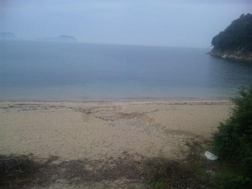 周防大島でダイビング