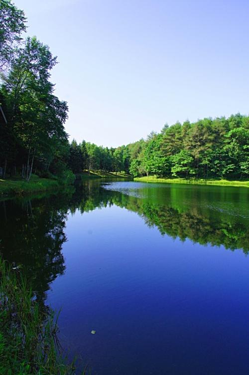 北海道への旅・緑豊かな湖畔のコテージ ホテル・ニドム滞在記その③-リスの森早朝散歩編-