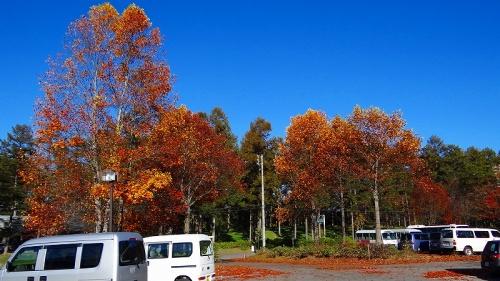 2011紅葉追っかけ(25)・・・霊泉寺湖の景観と紅葉