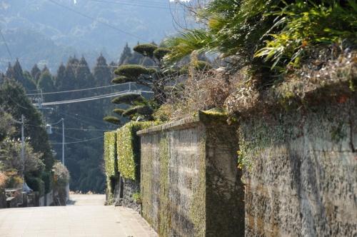 霧島・鹿児島の旅(1):姶良市 蒲生郷を歩く