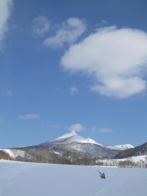ニョロニョロに会えたぁ~!!なんてステキなの(*☆。☆*) in大滝氷筍探訪