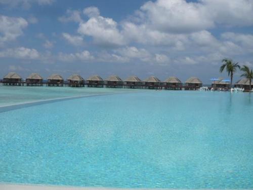 Dusit Thani Maldives(デュシタニモルディブ)<br />(2012年3月16日現在の情報です。情報は予告なしに変更されますので、予めご了承ください。)<br /><br />『マリンブルーのラグーンがとっても綺麗!』<br />タイにいくつものホテル&リゾートを展開するデュシトインターナショナルが、モルディブに2012年2月6日にソフトオープンしました。<br />360度珊瑚に囲まれた島を水上飛行機の上から見るとドキドキしちゃいます。<br />早くスノーケリングしたい!と…気持ちは海…。<br />さらに透き通るマリンブルーのラグーンでさらにハイテンション!<br /><br />Baa Atoll北東側に位置し、空港から水上飛行機で約35分。<br />Dharavandhoo国内線新空港より、スピードボートで約10分。<br />Dharavandhoo国内線新空港のオープン予定は未定で、今現在は水上飛行機での移動。<br />水上飛行機はMaldivian Air Taxi。赤い水上飛行機は模型みたいで可愛い。<br />水上飛行機チェックイン後、国際線ターミナルから空港東側にある水上飛行機のターミナルまではバスで移動します。<br />デュシタニの空港スタッフが、水上飛行機のチェックインをしてくれますのでとても安心!<br />ターミナル到着後は、水上飛行機出発のお時間まで、デュシタニの専用ラウンジでお待ちいただけます。ボーディング時間になりましたらスタッフがゲートまでご案内いたします。<br />今現在、ラウンジが完成しておりませませので、Maldivian Air Taxiのラウンジを使用。<br />水上飛行機は自由席。右が二人掛け、左が一人掛けです。<br />ダイレクトでデュシタニに向かうとき、右にはフルマーレ、パラダイス、ソネバギリなどが見られます。<br />左には、バンヤンツリー、アングサナイフル、バロス、ココパームボドゥヒティなどが見られます。<br />お天気が良いと涙のしずく…みたいな綺麗な色合いです。<br /><br />デュシタニのプラットホームは島の直ぐ目の前にあります。<br />スピードボートでも数分。<br />プラットホォームでは、リゾートスタッフがお迎え!<br />天候状況&水上飛行機のスケジュールにより、ロイヤルアイランドのプラットホームを使用する場合もあります。<br />ロイヤルアイランドのプラットホームからデュシタニまで、スピードボートで約15分で到着です。<br />桟橋到着後もスタッフが笑顔でお出迎えしてくれます。<br />桟橋から見るラグーンの色はまた一段と美しく輝いているので感動しますよ!!!<br />また桟橋の上から、既に珊瑚が綺麗なのをごらんいただけます。<br />担当のバトラーさんが、バギーでお部屋にご案内してくれます。お部屋でのチェックインは楽チンで嬉しい〜。<br />ウエルカムドリンク!お味は秘密…毎日飲みたいくらい美味し〜。<br />お部屋の説明などとても丁寧にしてくれますので、わからないことが有ればその場でお尋ねください。<br />お部屋には、施設のご案内、アクティビティスケジュール、リゾートマップがあります。<br /><br />島の雰囲気<br />島内は緑が綺麗なヤシの木が豊富で気持ちが安らぎます。太陽からの日差しも守られるので、歩いていても思ったより暑くはありません。<br />ヤシの葉の影は道路の模様になっていて綺麗です〜。<br />スパは島内にありますが、この辺りは特にヤシの木が綺麗なエリア!<br />トリートメントルームは、ヤシの木の上にある高床式。とてもユニークな造りです。<br />溢れる緑の中にあるスパは、究極の癒しの空間ですね。<br />ビーチのお部屋の周りにも緑が豊富で、プライバシーもあり、青い海を眺める中、緑は眼に優しく、ほっとする背景です。日陰も沢山あるので、とても気持ちよく過ごせます。<br />ビーチはプール辺りが綺麗です!しっとりとしたソフトなビーチ裸足に優しく、ヤドカリさんも元気よく歩いています。<br />透き通ったラグーンは、太陽さんの日差しでキラキラと輝いています。<br />とっても綺麗です〜…モルディブの海だな〜〜〜と実感。<br />サンドバー、プール、シーグリルレストランからは、綺麗なサンセットを眺めていただけます。<br /><br />1,800sqmの島は歩いて約25分…。お散歩するのには丁度良いサイズ。<br />健康的にあるいてもよし、ちょっと疲れたときはバギーサービスもしてくれますので、担当のバトラーさんに電話をしてください。また、活動的に動き
