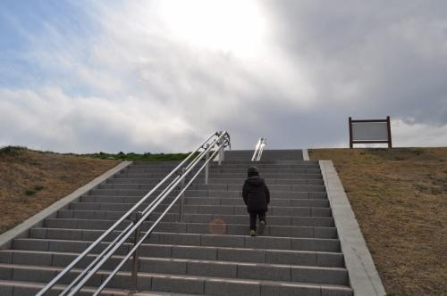 ☆市川~松戸~葛飾、ちい散歩 ロング☆