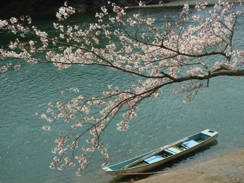 爛漫の桜を愛でながら 桜淵公園から腕扱山へ