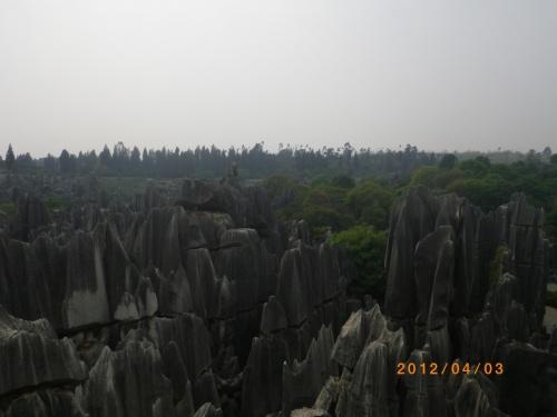 2012年の清明節、東莞に引っ越して最初の旅行地に選んだのは雲南省の石林と大理。<br />シーサンパンナ、シャングリラ、麗江にはすでに行っているため、雲南省にはこれが最後かなぁ。<br /><br />今回のメインは世界遺産中国南部カルストの一部石林。<br />では今回の旅行の予定<br /><br />4月1日(彼女のみ移動)<br />CZ6327 大連→深セン<br /><br />4月2日<br />ZH9995 深セン20:45→昆明22:55<br />昆明金泉大酒店泊<br /><br />4月3日<br />朝、昆明駅長距離バスターミナルからバスで石林に移動<br />石林見学<br />夕方昆明市内にもどり、夕食<br />昆明金泉大酒店泊<br /><br />4月4日<br />8L9903 昆明7:15→大理7:50<br />大理古城<br />レンタサイクルを借りて<br />崇聖寺三塔文化旅游区<br />蒼山リフトで蒼山へ。<br />大理古城蘭林閣酒店泊<br /><br />4月5日<br />CZ3482 大理12:40→広州16:15<br />ぱっしょん<br />広州地下鉄 空港→広州東駅<br />長距離バス 広州東バスターミナル→東莞長安北バスターミナル<br />彼女<br />CZ3608 広州19:25→大連22:45<br /><br />ではスタート<br /><br />4月2日<br />僕の仕事が終り、彼女と食事。<br />その後、タクシーで30分。深セン空港へ。<br />深セン航空ZH9995便で昆明へ。飛行機は1時間遅れ。到着時間は0時。<br />昆明に到着後、タクシーで昆明金泉大酒店へ向かい、宿泊。<br /><br />4月3日<br />朝、バスで昆明駅に。<br />昆明駅長距離バスターミナルへ。昆明駅長距離バスターミナルに行くとチケット売り場はあるけど、バスがない。<br />チケット売り場のお姐さんに聞くと外に出て906路バスで東バスターミナルへ行け。とのこと。<br />906路バスの乗り場が分からず、南窯バスターミナルに行ってみても、長距離バスがまったくない。<br />これはやばい。<br />とっさに感じ、タクシーに飛び乗り、東部バスターミナルを告げると、走る走る。40分走ってやっと到着。<br />石林に向うことになりました。<br /><br />ちょっとだけ焦った1日目2日目です。