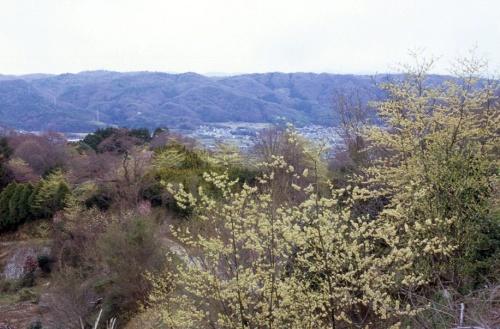 奈良の都の小さな里で