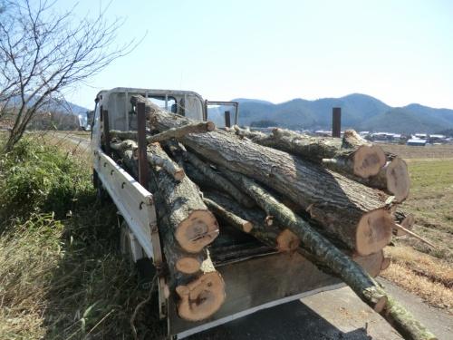 帰ってきました京丹波町秘密基地に・・・雪が多かったので?・でも無事にありました・・・117編