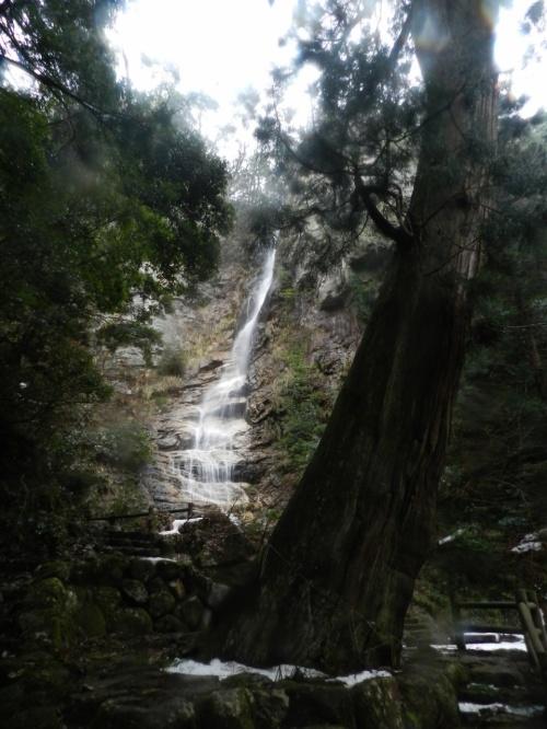 落差50mの『竜王滝』◆鳥取県南西部(日野町)の隠れた名瀑