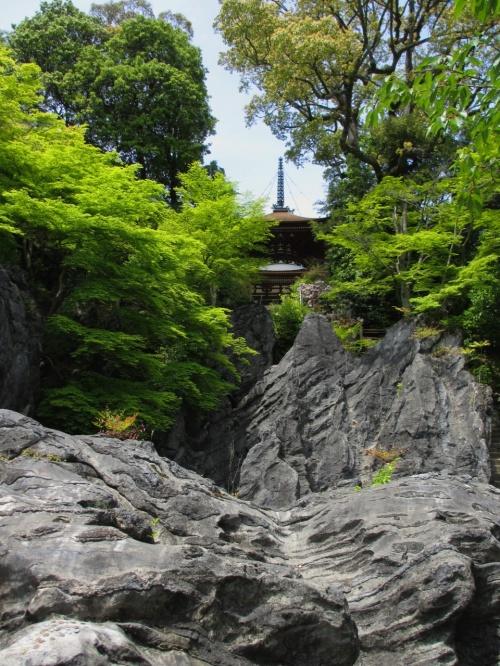 汗ばむくらいの五月晴れの中、新緑薫る石山寺を歩いて