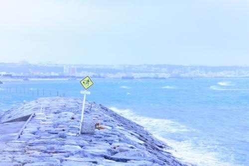 ○o。.台風 comes to おきなわ2012後編(琉球村&玉泉洞&デポアイランド).。o○