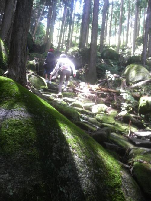 「和具の浜海岸」、熊野古道「八鬼山越え」、「魚跳渓」激安1泊2日