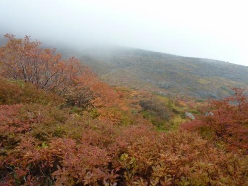 紅葉ピークの那須岳登山は強風の中