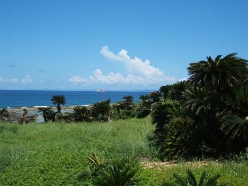 故郷訪問・徳之島☆2007年 ~私の母が育った離島へ~