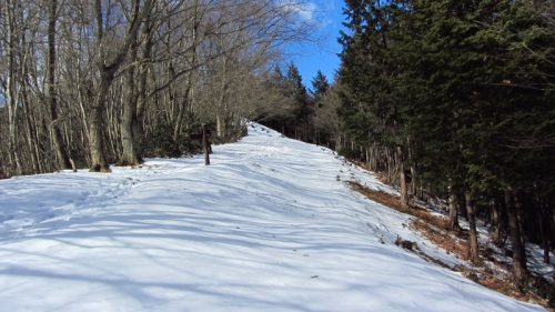 丹沢の練習で味を占め、今度は奥多摩で試すぞ!とばかり、2週連続で雪山ハイクに挑戦。<br /><br />今度の山は本仁田山。奥多摩の定番である川苔山の手前にある低山である。<br />本当は川苔山を目指したかったのだが、全行程のコースタイムが意外に長くなりそうだったこと、下山ルートに無雪期でも危険個所と言われる急坂があったこと(冬季は当然凍結)などで、ここは無理をせずに手前の本仁田山で引き返して来ようと言うことになった。<br /><br />さて、当日は毎度のごとく始発。起床は4時半である。<br />正直なところ、沖縄に行く方がよっぽど楽だ(笑)<br />この日も、登山口に取り付いたのは8時半。この時点ですでにおよそ3時間かかっている。<br /><br />そしてこの本仁田山、比較的楽ちんな山と思っていたら、とんでもなかった…