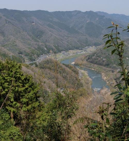 桜♪桜♪ 笠置山と銀の帯