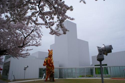 2009年十和田市現代美術館