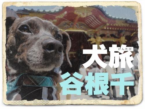 犬旅 ~谷根千~