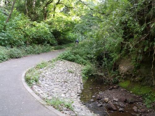 いたち川の水源を訪ねて、横浜を歩く