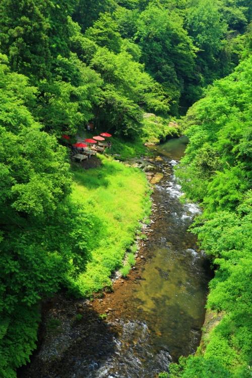 石川 無限庵と鶴仙渓の緑