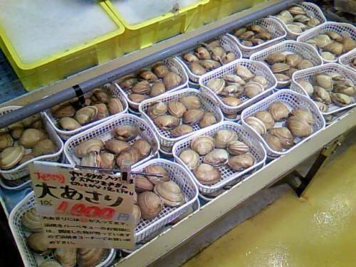 母子旅☆知多半島の魚市場「魚太郎」へ行ってきました~