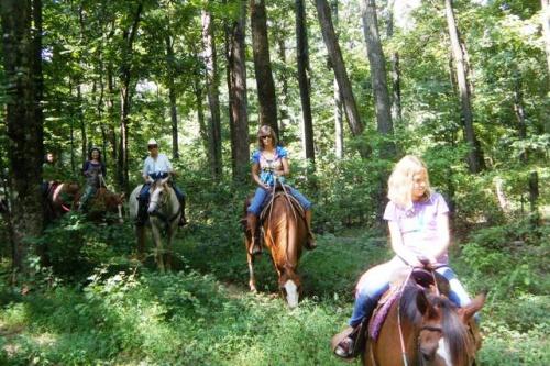 先日バージニア州に行った時、乗馬のツアーで「THE CIVIL WAR ...  先日バージニア