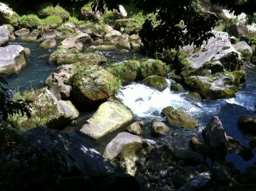 友と巡る鹿児島 おまけも温泉