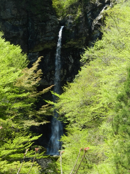 高知県いの町の北端部にある『氷室大滝』◆2013年GW・四国3県(愛媛・高知・徳島)滝めぐりの旅≪その2≫