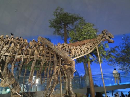 東尋坊と日本最大の恐竜博物館&夏にスキージャム勝山で日帰入浴