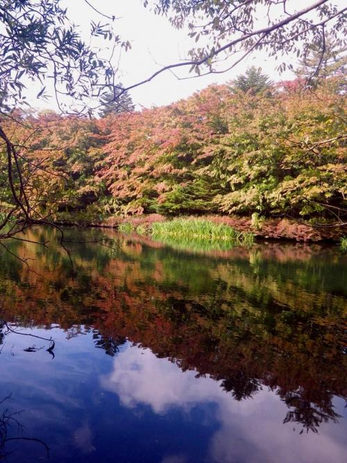 軽井沢:秋の気配に振り返れば---。
