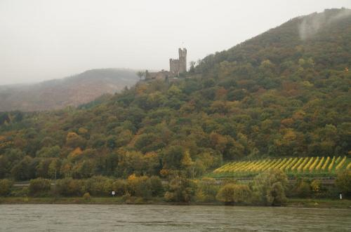黄金のラインを行く・2013ドイツ旅行記1