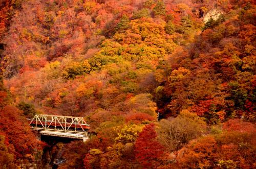 残しておきたい、ダムに沈みゆく吾妻渓谷と川原湯温泉周辺に広がる紅葉風景を求めて訪れてみた