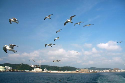 東京湾フェリーとアクアラインで夏の東京湾ぐるっと一周