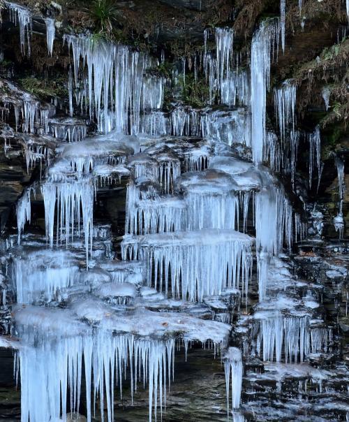 宝登山ろうばい園の早春の香りと自然が創り出した冬の造形、奥秩父の三十槌の氷柱