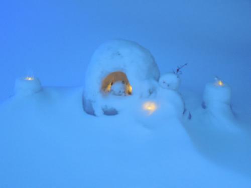 2泊3日の奥日光冬旅のメインイベント「中禅寺カマクラまつり」は、雪の中。 <br />今年は、花火も楽しみたいと、一ヶ月も前から宿を予約。 <br />大雪にも負けず、中禅寺湖までたどり着きました、しかし、中禅寺湖は吹雪の中。 <br /> 万全の防寒対策(手袋もしっかり2セット)、私は良いのですが、カメラの防寒着がありませんでした、加えて、厚手の手袋でカメラの露出調整も出来ず、カメラは、寒さに負けました。。  <br /><br /> もしも、宜しければ、寒さを楽しんでください。 <br /> 大雪の東武日光駅から、メインイベントは、始まります。<br />
