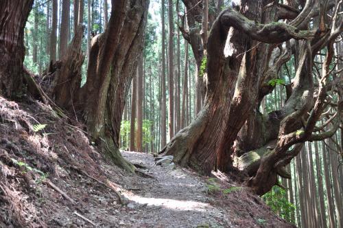 2013年5月熊野古道・小辺路・三浦峠・十津川温泉