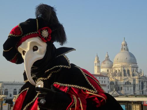 2014年、中世の衣装、仮面、水の都に、あこがれてベニスのカーニバルへ。