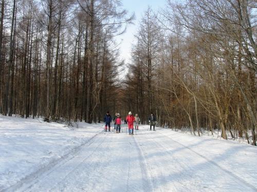 八幡平リゾート県民の森でスノーシュートレッキングを楽しむ