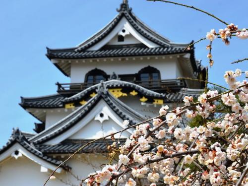 彦根城 訪問 in 滋賀 (ちょっと立ち寄りシリーズ) Vol. 15