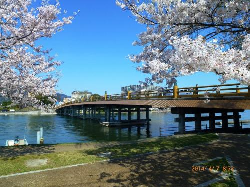 出張ついでの…#19 (^^ゞ   ■2日目 琵琶湖湖南観光と温泉満喫の旅