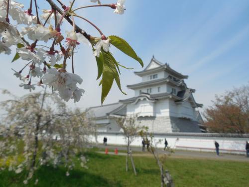 のどかな春の関宿城まつり