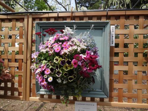 (1/2) 花風景散歩、浜名湖花博2014年、色彩と香りの饗宴を浴びる − 浜松フラワーパーク 4月  2014年