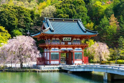 勝運の寺へ桜を見に  勝尾寺