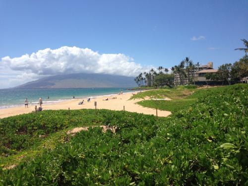 ハワイは、オアフ島には2度ほど訪れましたが<br />マウイ島がいい! と周囲から聞いていたので、<br />GWに特約航空券を利用して 夫婦二人でマウイ島旅行にいってきました。<br /><br />まさかGWに席が取れるとおもっていなかったのですが<br />10日前くらいに調べたら空席あり、と出ていたので<br />即決で行くことに!