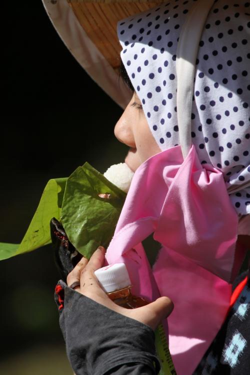 Solitary Journey [1389] 早乙女さんが煌めき、飾り牛や太鼓の囃子方が盛り上げる'大花田植絵巻'<新庄のはやし田>広島県北広島町