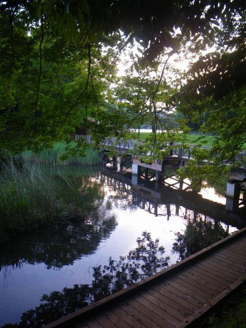 箱根峠を経由して伊豆高原のバリ島へ!?