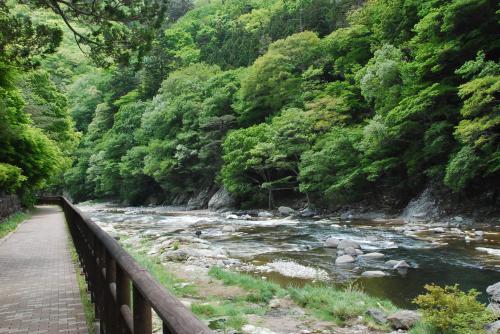 新緑の塩原渓谷を自然散策(栃木県)