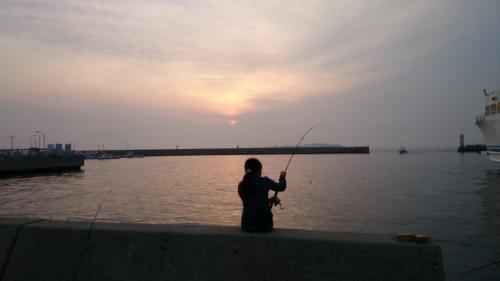 師崎港で釣りを楽しんできました