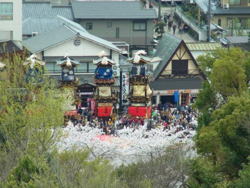 桜満開の犬山祭(2014年)