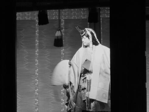 下鴨神社の梅雨の晴れ間の賑わいの寸景